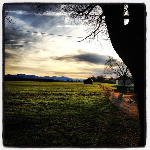 Eine dunkelgrüne Wiese. Ein brauner Weg läuft von rechts ins Bild und an zwei Holzscheunen vorbei. Im Hintergrund die Alpen.