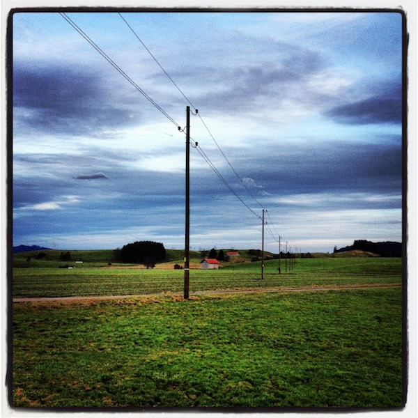 Grüne Wiese. Stromleitung läuft durch das Bild. Hügel am Horizont.