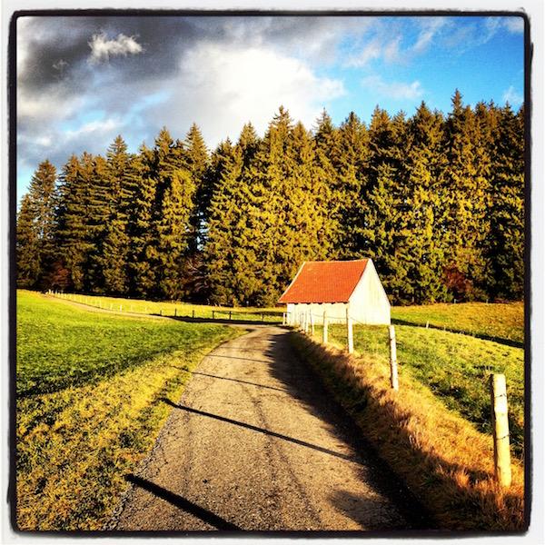 Ein grauer Weg führt an einer Holzscheune mit einem roten Ziegeldach vorbei. Grünes Gras. Grüne Bäume. Weiß-blauer Himmel.