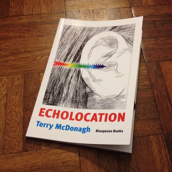 Book Echolocation on a dark brown wooden floor. Cover by Olaf Hille shows a rainbow-coloured sound wave that goes into an ear that is sketched in black, grey and white.