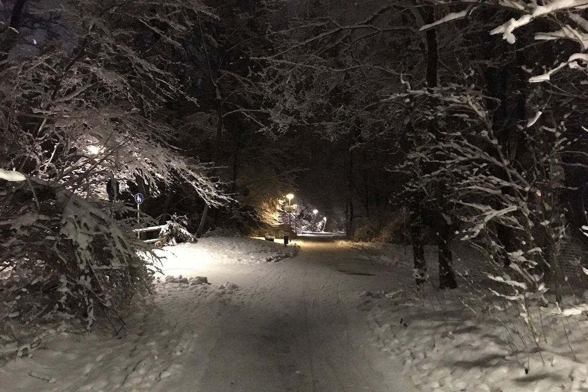 Night run through the snowy Pasinger Stadtpark